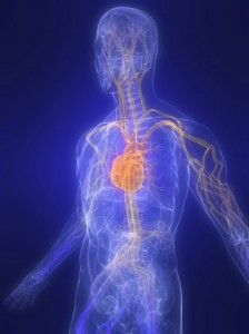 Nonspecific Low Back Pain-10-8-13